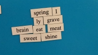 Teen Patron Poem 7 - April 20, 2015