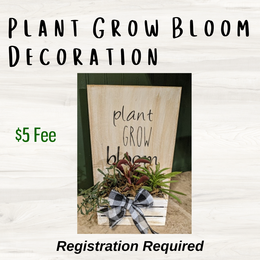 Plant Grow Bloom Project