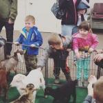 Baby Animals 4.27.19